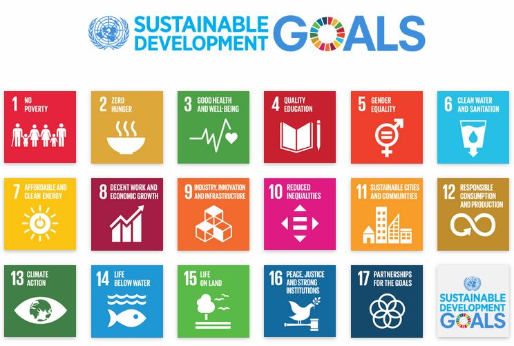 The Sustainable Development Goals. Source: UNDP.