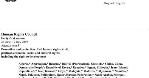 The Human Rights Council Advisory Committee: A new tool in